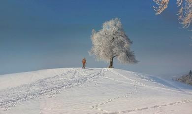 Edited version of snow in Zurich (Larry Brandt)