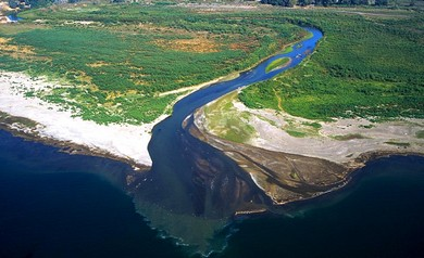 Jordan River entering Sea of Galilee (Bibleplaces.com)