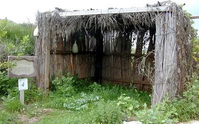 Succa at Neot Kedumim (Bibleplaces.com)
