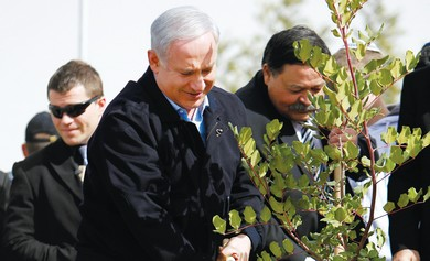 Netanyahu plants a tree on Tu Bishvat