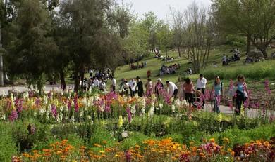 Jerusalem Botanical Gardens (Judith Marcus)