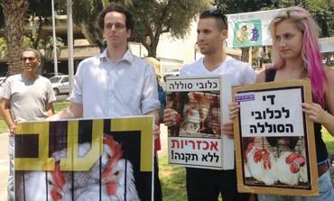 Israel bans starving hens