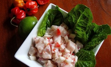 Panamanian Ceviche (Gayle Squires)