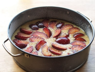 plums sliced over batter, ready to bake (Gayle Squires)