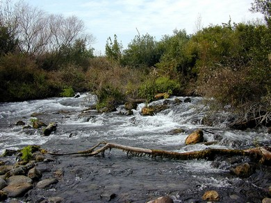 Jordan River (BiblePlaces.com)