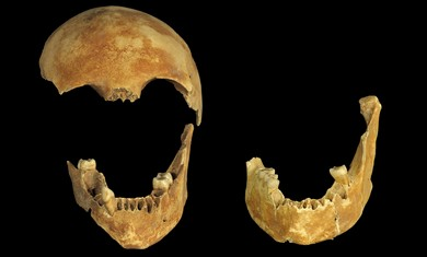 8,500-year-old skulls found in Neolithic well in the Jezreel Valley. - Photo: Clara Amit/Israel Antiquities Authority
