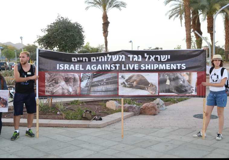 Activist protest in Eilat (Picture: Yoav Ben-Dov)