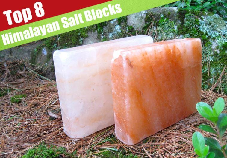 8 Best Himalayan Salt Plateblock Reviewed For 2018 Jerusalem Post