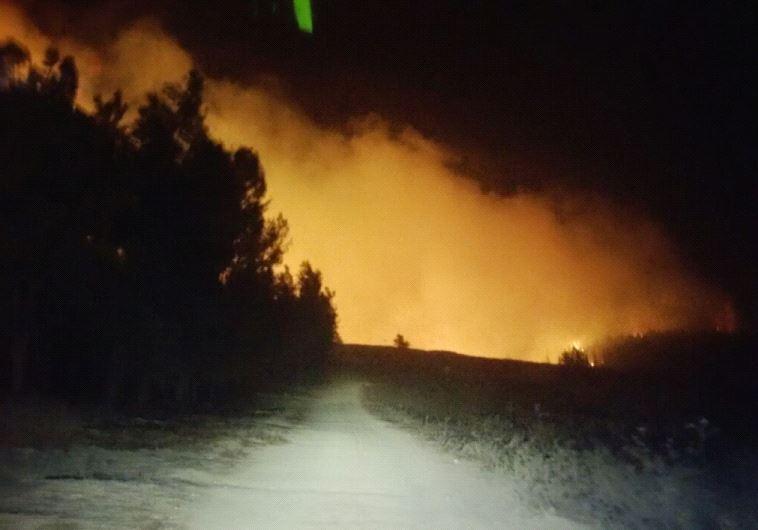 Forest fire near the Latrun-Neve Shalom area (Screenshot)