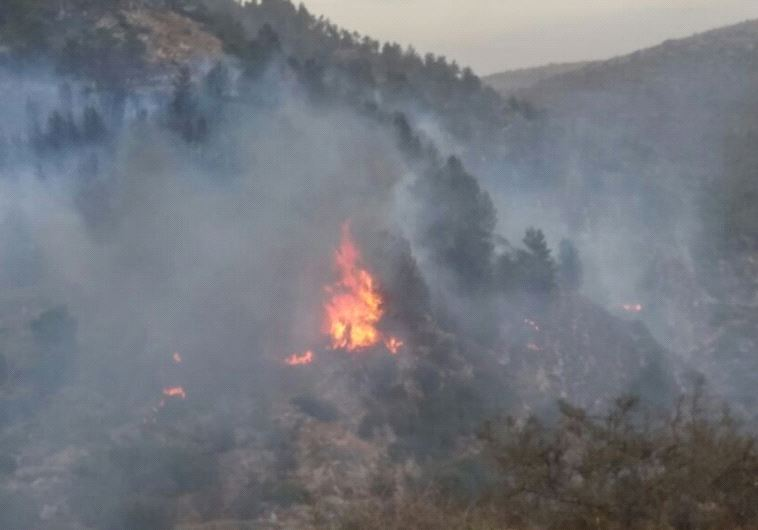 Forest fire in Dolev (JUDEA AND SAMARIA FIRE DEPARMENT)