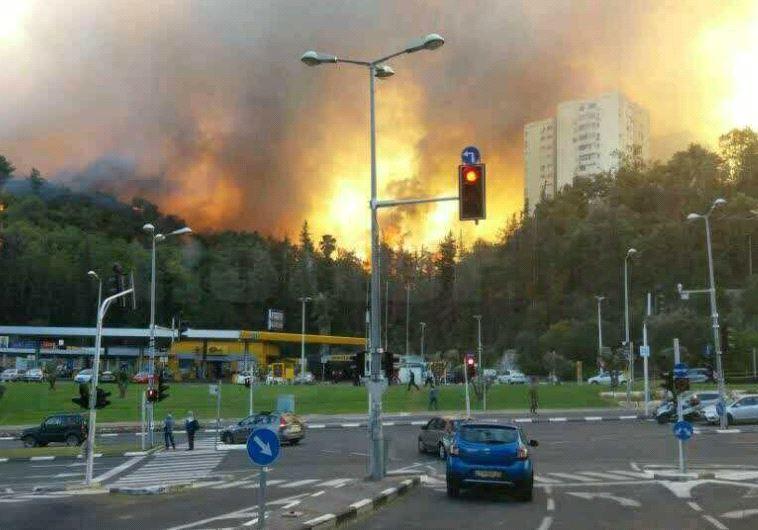 Incêndios em Haifa, 24 de novembro de 2016 (AVSHALOM SASSONI)