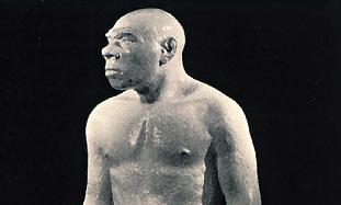 RECONSTRUCTIONS OF Neanderthals, Rheinischeslandes