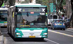 bus no.8