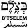 BTselem Logo