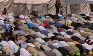 Syrian refugees in Turkey.