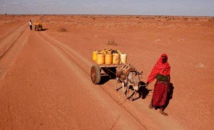Drought causingt famine in East Africa