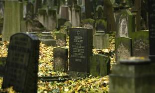 Cemetery (file)
