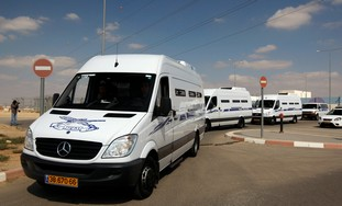 Minibuses carry Egyptian prisoners for Grapel deal