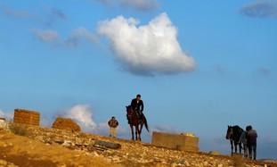A Beduin man rides a horse in al-Arakib