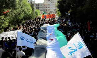 Anti-Assad protest near Syrian city of Homs