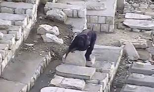 Vandalism at the Mount of Olives