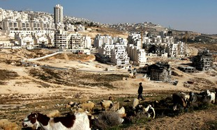 Jerusalem's Har Homa