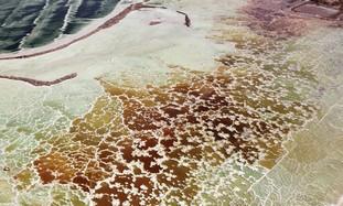 A Dry Dead Sea