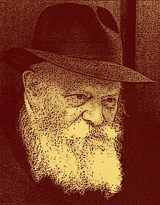 Gentile Lubavitcher refused conversion