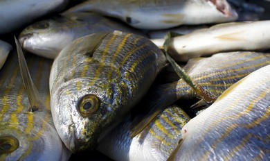 Omega-3 fatty acids, most commonly found in fish