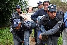 ta refugess 224.88