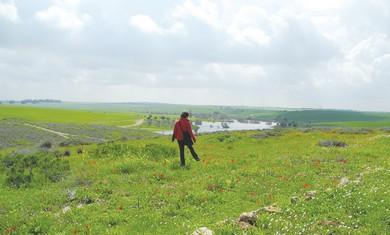 Pura Nature Reserve