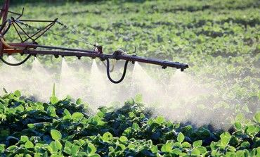 Crops receive herbicide treatment