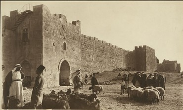 sheep market outside of Herod's Gate (circa 1900)