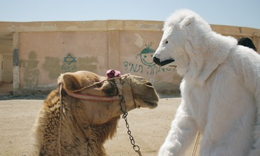 A 'POLAR BEAR' meets with a camel
