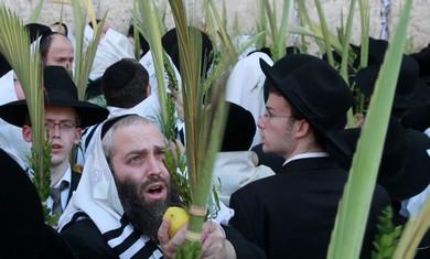 Hoshana Raba, the seventh day of Succot