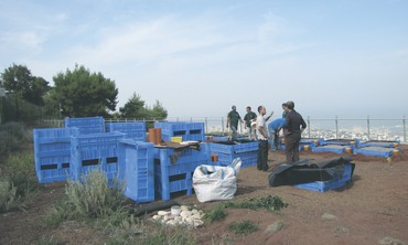 Green Roofs Ecology Research Center