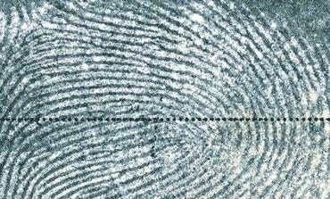 Fingerprint negative image from HU.