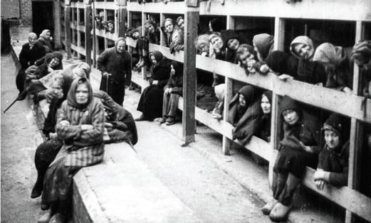 holocaust 521