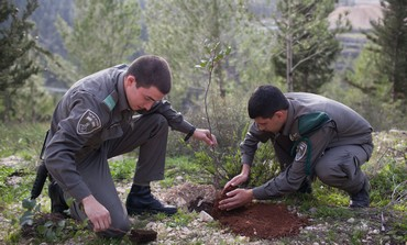 Israel Border Police soldiers plant trees for Tu Bishvat, January 24, 2013.