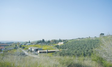 Moshav Taoz in the Judean Hills