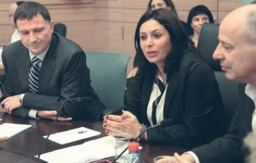 Miri Regev at the Knesset Interior and Environmental Affairs Committees, April 17, 2013.