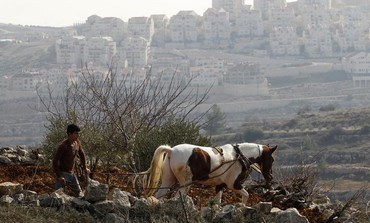 A Palestinian farmer in the West Bank ploughs his land.