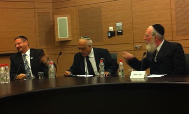 MKs Yisrael Eichler and Dov Lipman argue in the Knesset , October 16, 2013