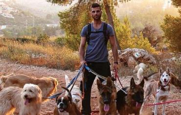 Adopt A Dog Jerusalem