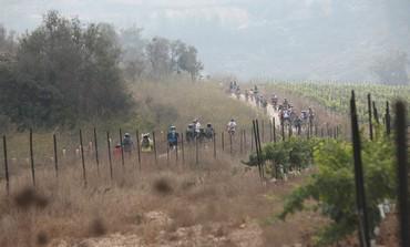 Bikes in Jerusalem