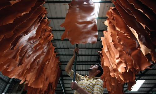 A TANNERY WORKER hangs pieces of leather to dry at a Hebron leather factory