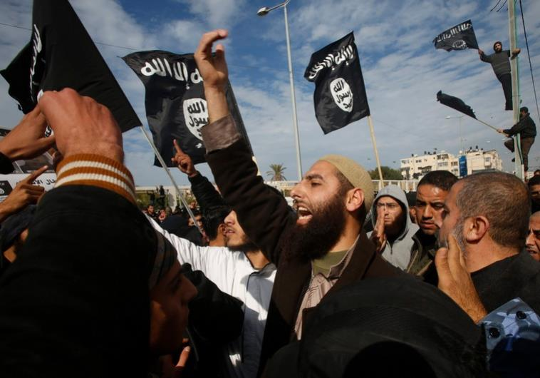 gaza salafists