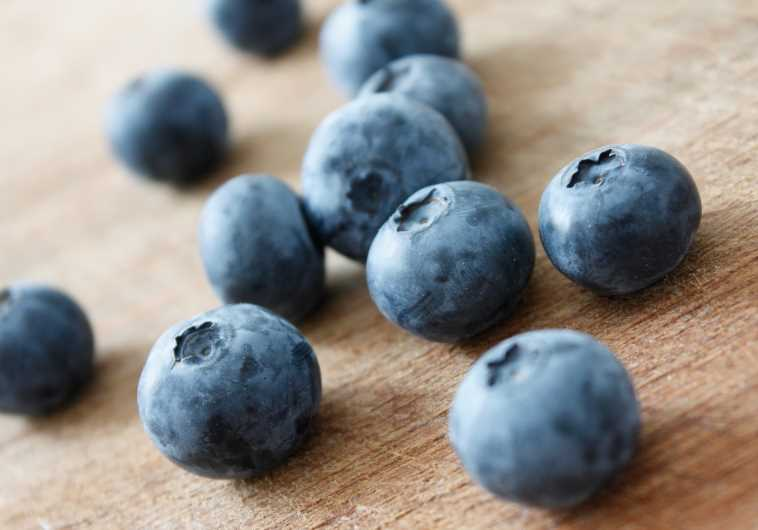 Blueberries recipe