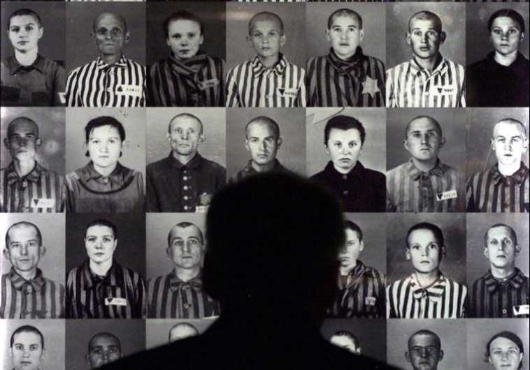 A man looks at photographs of Hungarian Jews held at the Auschwitz Concentration Camp during World W
