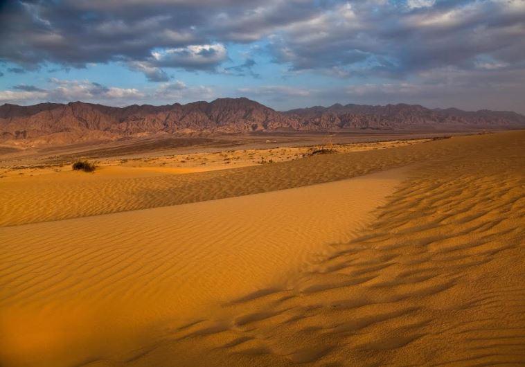 Samar sands region in the Arava